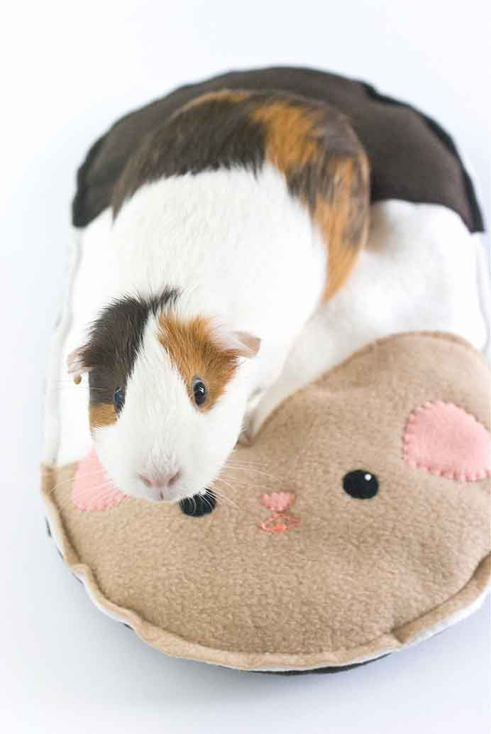 Even if you don't have a guinea pig as a pet, this Guinea Pig cushion is adorable. Mollie from Wild Olive shows you how to create on in her tutorial. Please share. Make Mondays more manageable and sign up for our craft inspiration newsletter. Delivered to your inbox - CraftyLikeGranny.com #pets #crafts