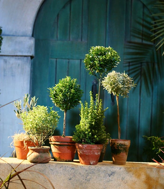 How to Start a Herb Garden for Cooking and Crafting. Some excellent suggestions by Crafsty on what to do to create a herb garden. Whether the herbs are grown in your own patch of soil or in pots, these ideas will be very helpful.Please share. Make Mondays more manageable and sign up for our craft inspiration newsletter. Delivered to your inbox - CraftyLikeGranny.com #gardening #gardeningtips #gardeninghacks