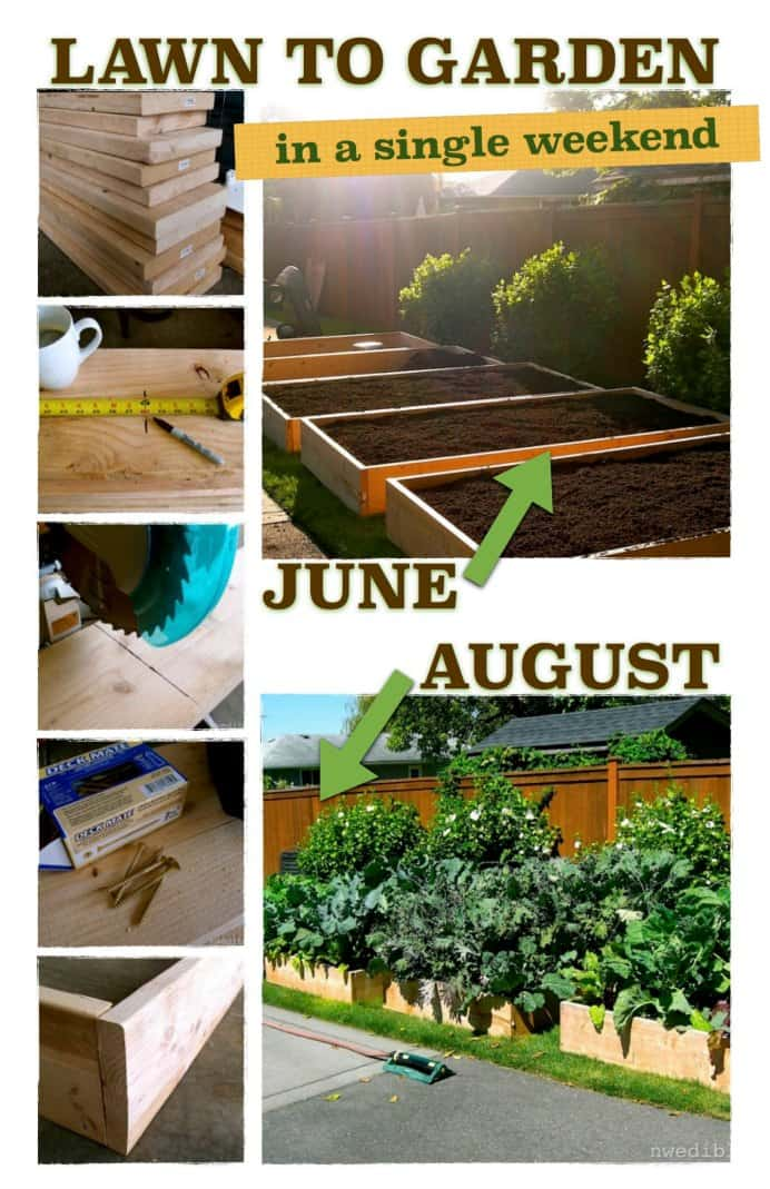 Got some time on your hands and love gardening? Have some family members willing to help you out with this project? Erica at Northwest Edible Life has an excellent guide to creating raised garden beds on what was once lawn. Please share. The best in craft delivered to your inbox every Monday - CraftyLikeGranny.com #gardening #gardeningtips #gardeninghacks