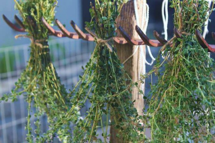 The team over at Urban Gardeners Republic have some fabulous tips on how to dry herbs. If you've been enjoying growing herbs through the warmer months, this is a way to use excess herbs. Please share. You will always look forward to Mondays, with our craft inspiration roundups -CraftyLikeGranny.com #gardening #gardentips #herbs