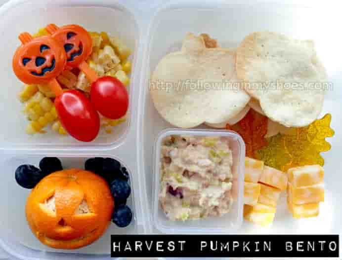 Halloween Themed #Bento Boxes Ideas by Following in my Shoes. Delicious snacks that are super cute and fun for kids. Please share. You will always look forward to Mondays, with our craft inspiration roundups -CraftyLikeGranny.com #halloweencrafts #lunchboxideas #halloweenrecipes