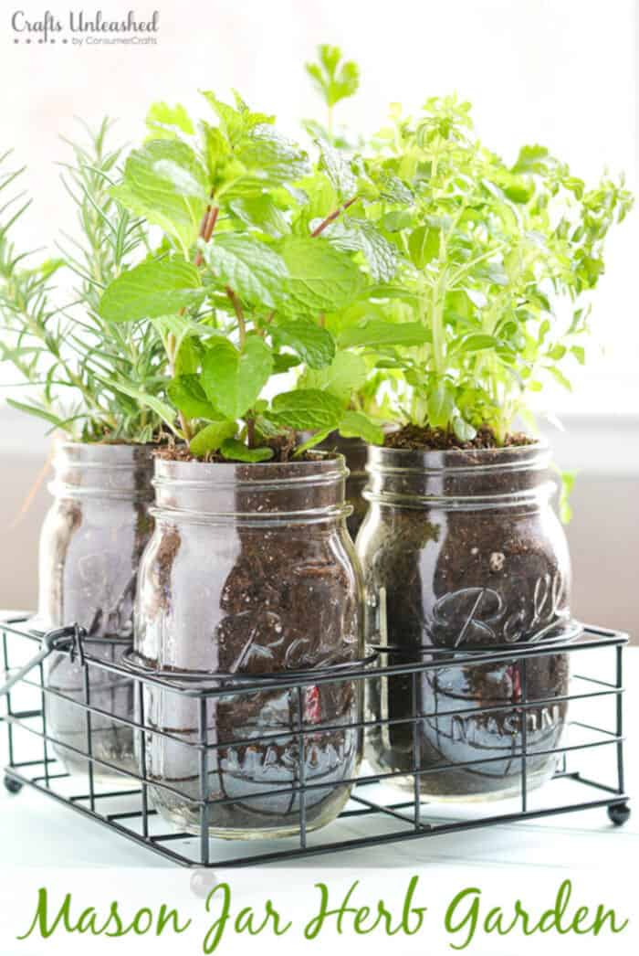 DIY Herb Garden In Mason Jars by Crafts Unleashed