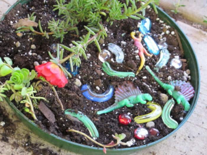 Dinosaur Gardens by Eclectic Chica