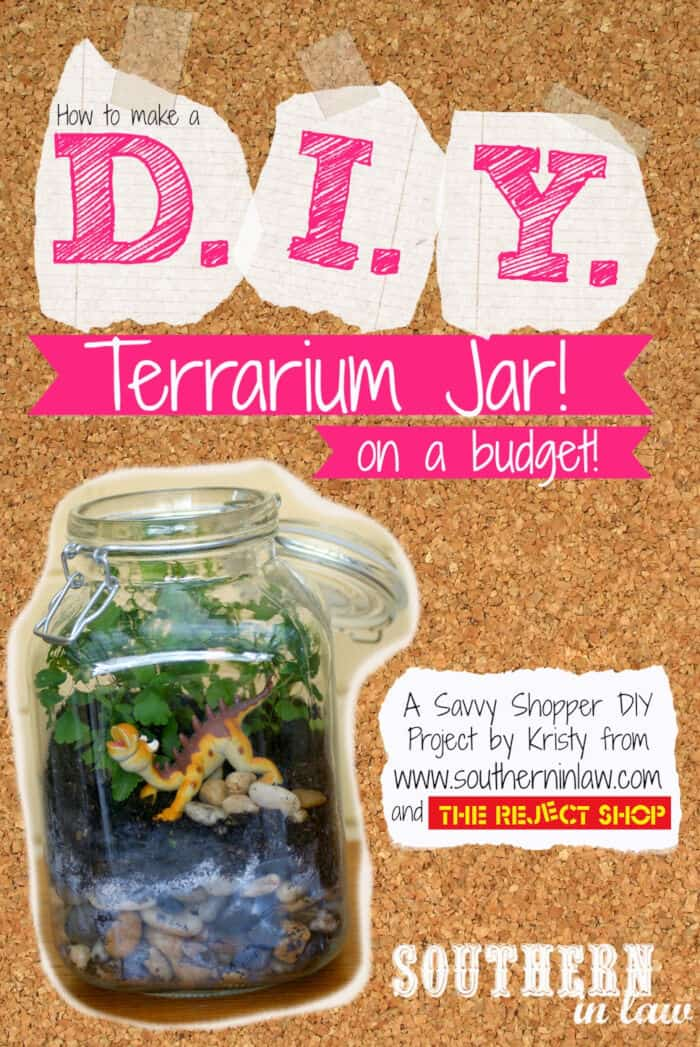 How to Make A Terrarium on a Budget! by Southern In Law