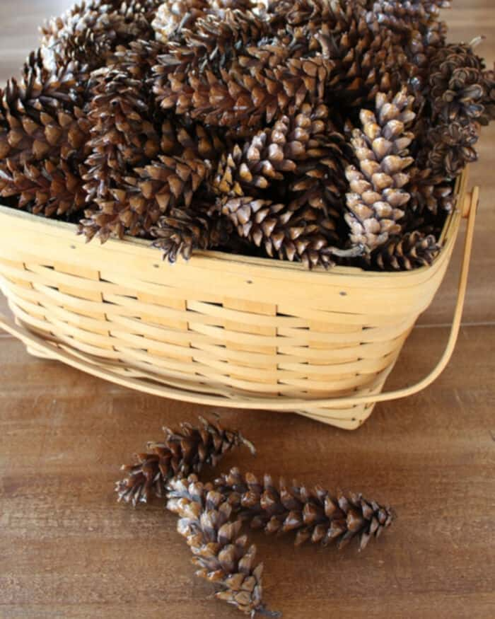 How to Prepare Pine Cones for Crafts by Bren Did
