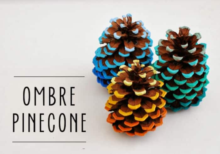 Ombre Pinecone by Whimzeecal