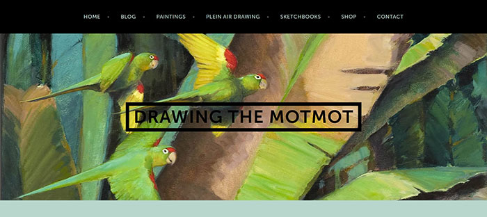Drawing-The-Motmot