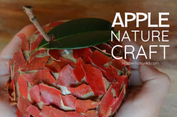 Apple Nature Craft by Mother Natured