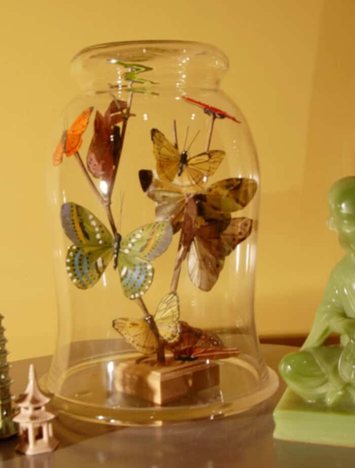 Butterflies Under Glass by Make Your Mark