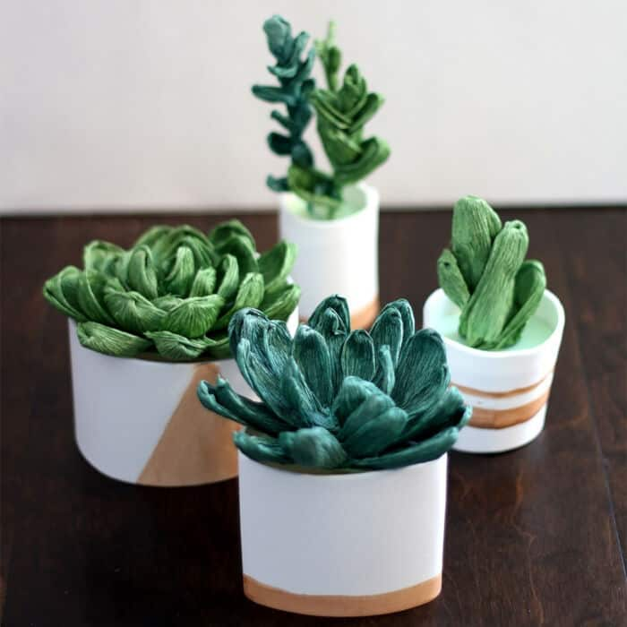 Crepe Paper Succulents by Ash and Crafts