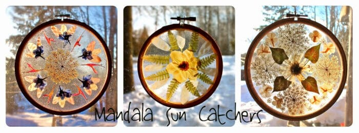 Mandala Sun Catchers by Twig and Toadstool