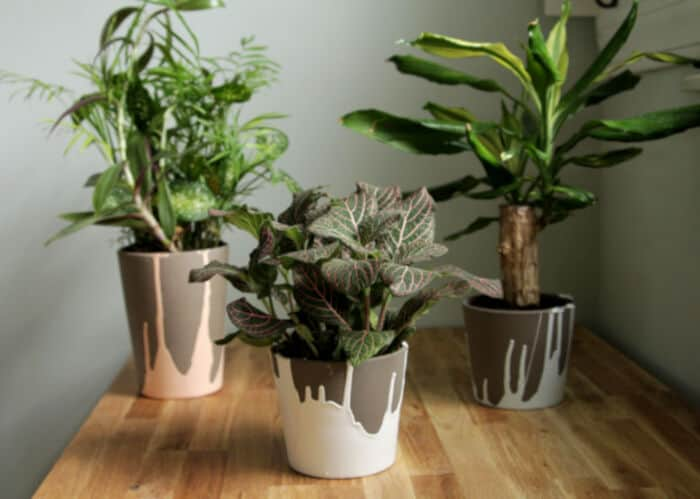 Paint Dipped Pots by The Decor Fix