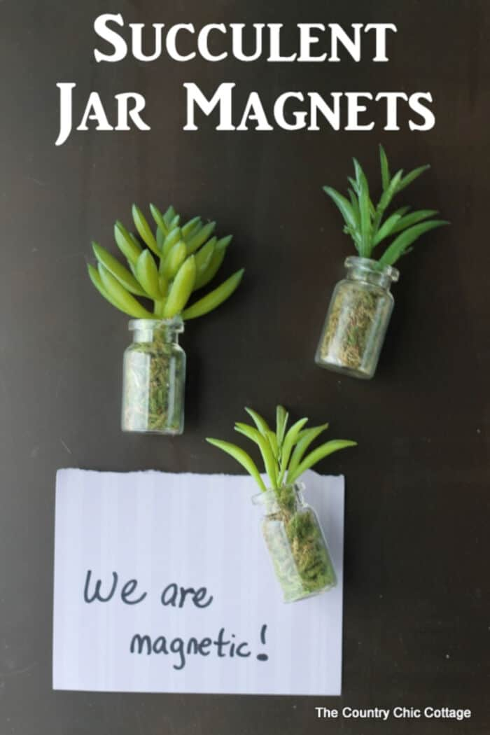Succulent Jar Magnets by The Country Chic Cottage
