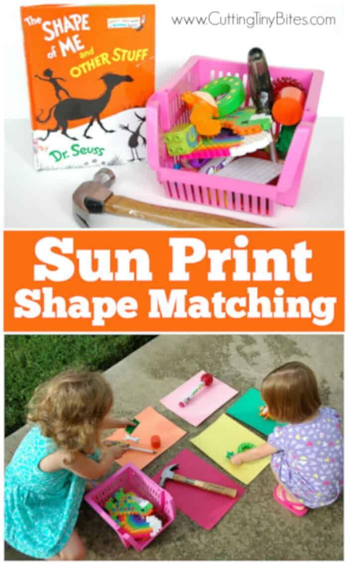 Sun Print Shape Matching by What Can We Do With Paper and Glue