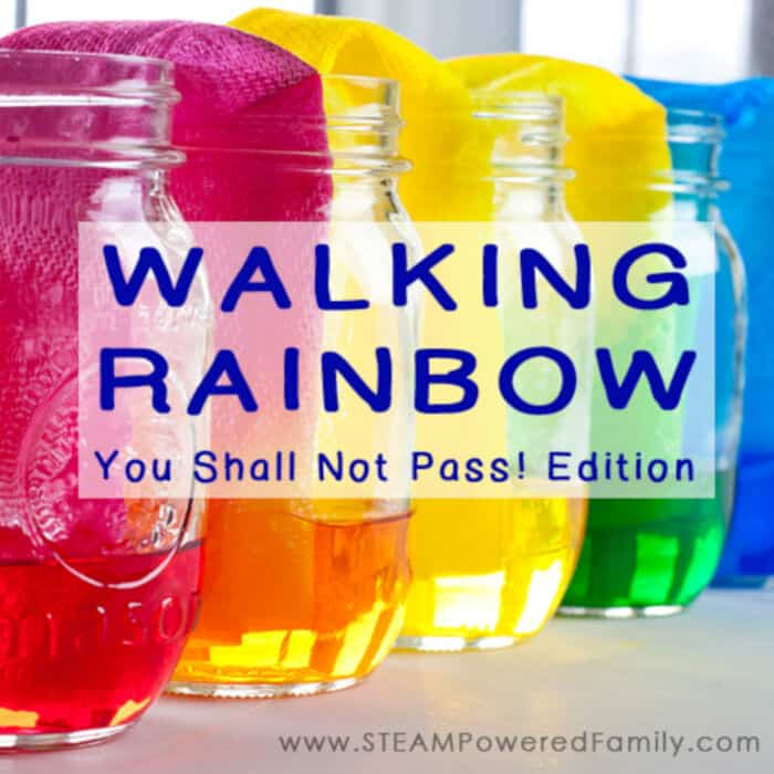 Walking Rainbow You Shall Not Pass Edition by Steam Powered Family