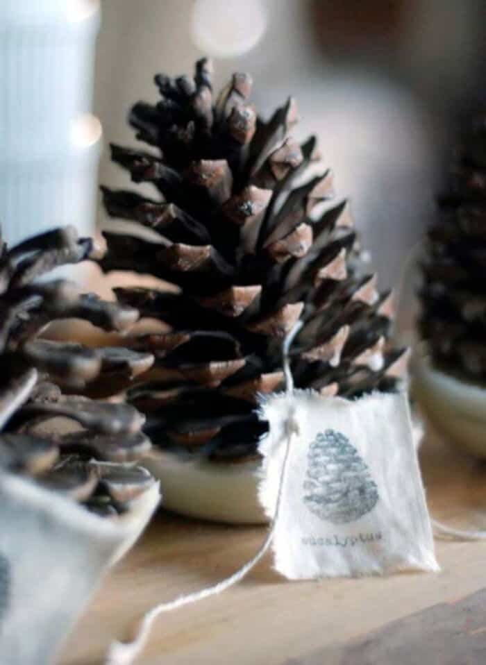 DIY Pinecone Fire Starter by Design Sponge