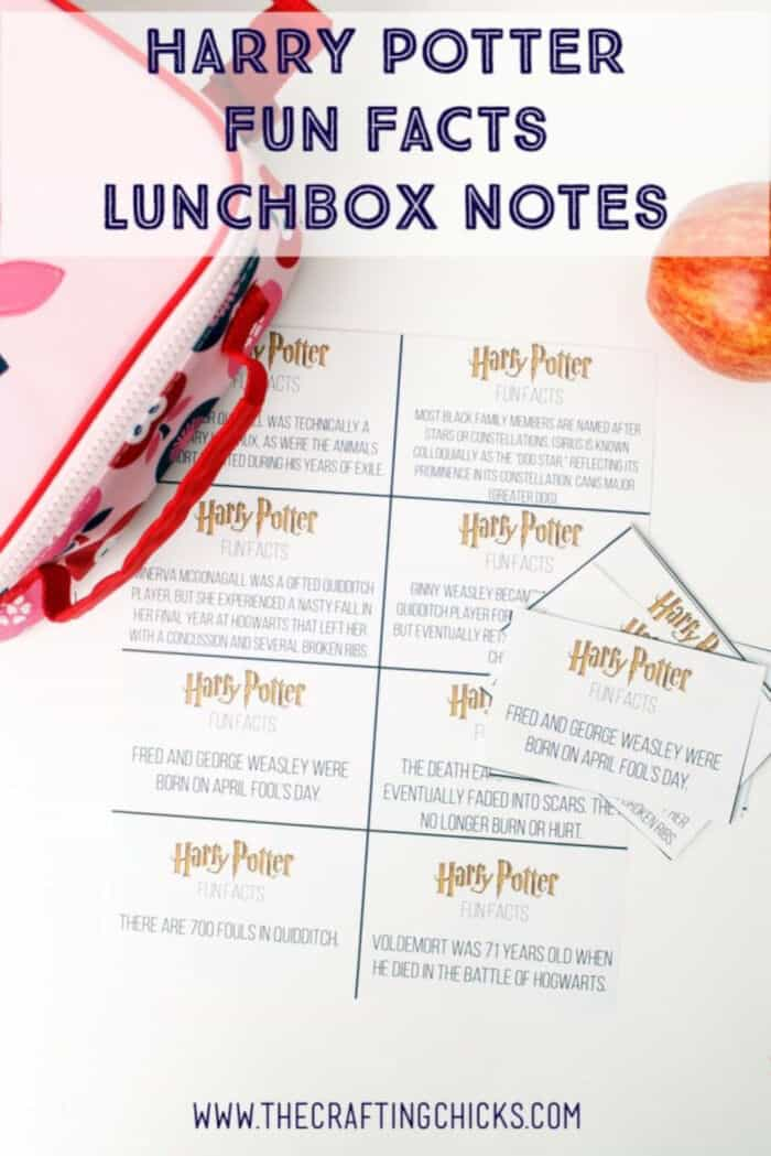 Harry Potter Fun Facts Lunchbox Printables by Crafting Chicks