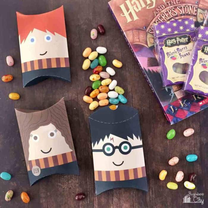Harry Potter Pillow Boxes by Bugaboo City
