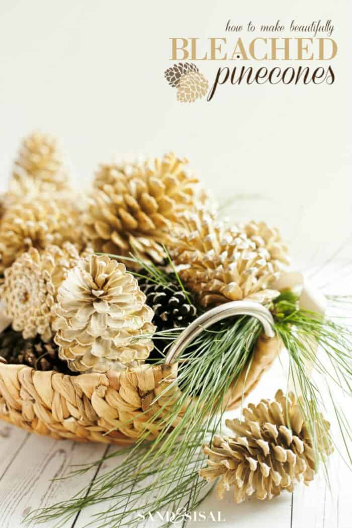 How to Make Beautifully Bleached Pinecones by Sand and Sisal