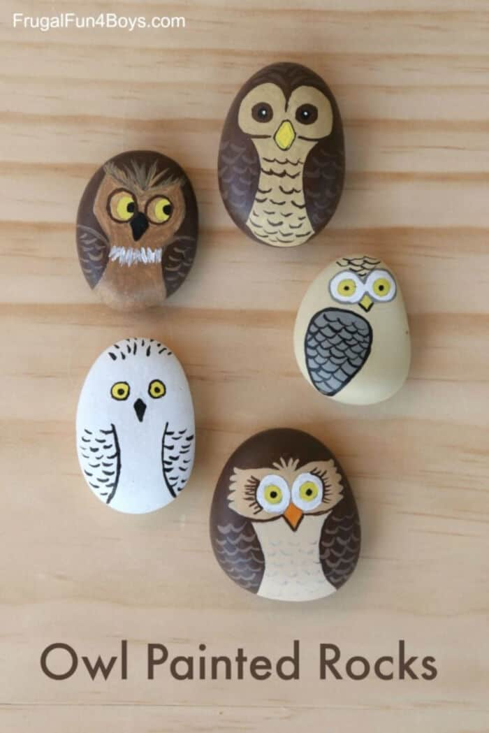 Owl Painted Rocks by Frugal Fun For Boys and Girls