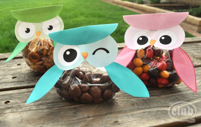 Owl Treat Bags by Chica Circle