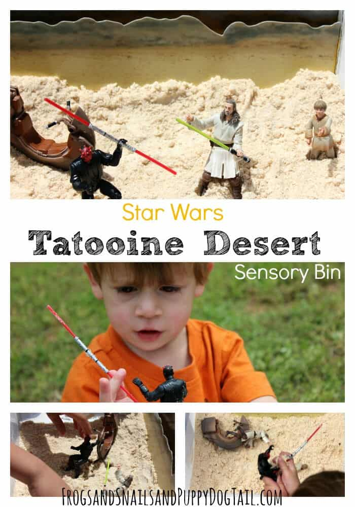 Star Wars Tatooine Desert by Frog Snails and Puppy Dog Tails