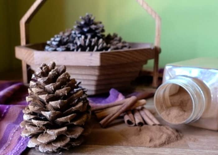 Cinnamon-Scented Pinecones by eHow