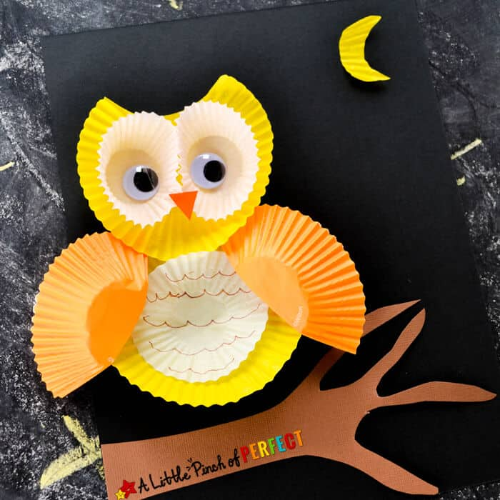 Cute-Cupcake-Liner-Owl-Craft-by-A-Little-Pinch-of-Perfect
