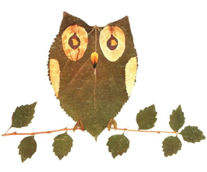 Fall Leaves Craft Ideas by Ko Ko Ko Kids