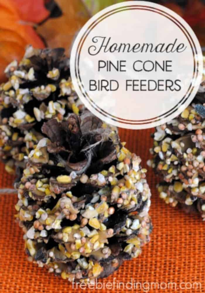 Homemade Pine Cone Bird Feeders by Freebie Finding Mom