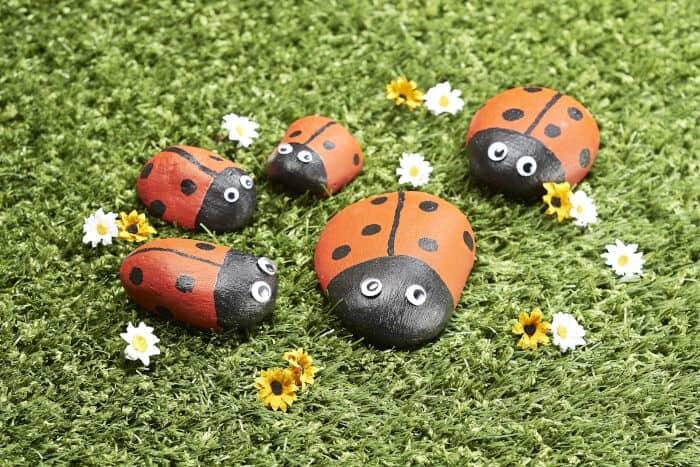 Ladybird-Pet-Rocks-by-Hobby-Craft