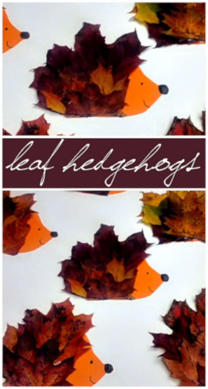 Make a Hedgehog Craft Using Leaves by Crafty Morning