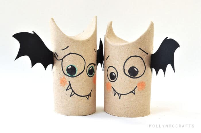 Toilet Roll Bat Buddies by Molly Moo Crafts