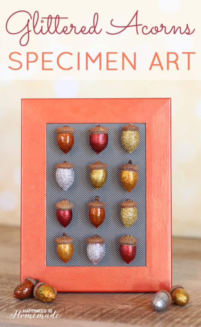 Glittered-Acorns-by-Happiness-Is-Homemade