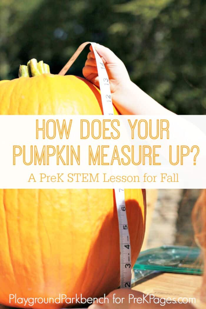 How-Does-Your-Pumpkin-Measure-Up-by-Pre-K-Pages