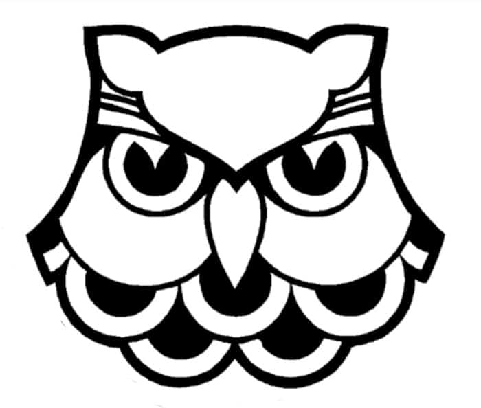 Owl-Craft-by-The-Crafty-Classroom