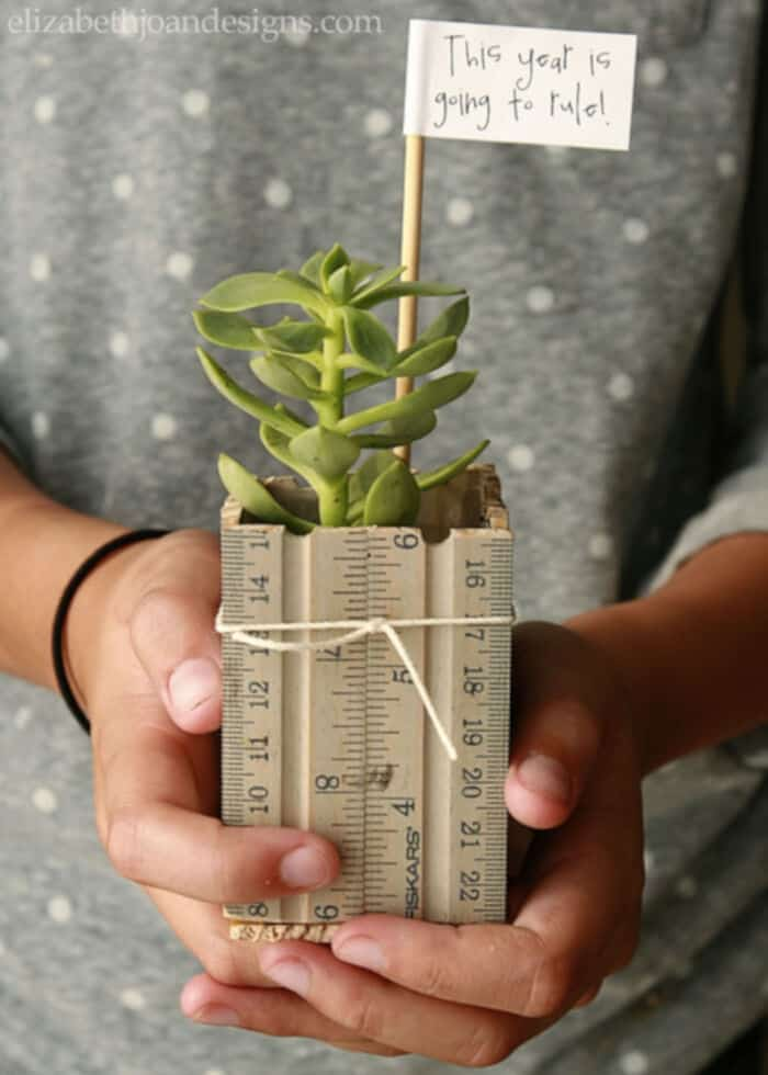 Ruler-Succulent-Planter-by-Elizabeth-Joan-Designs