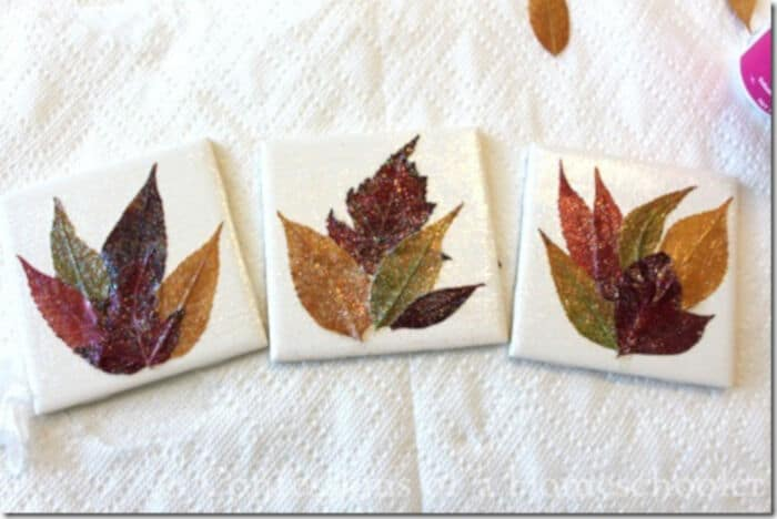 Homemade-Leaf-Coaster-Craft-by-Confessions-of-a-Homeschooler
