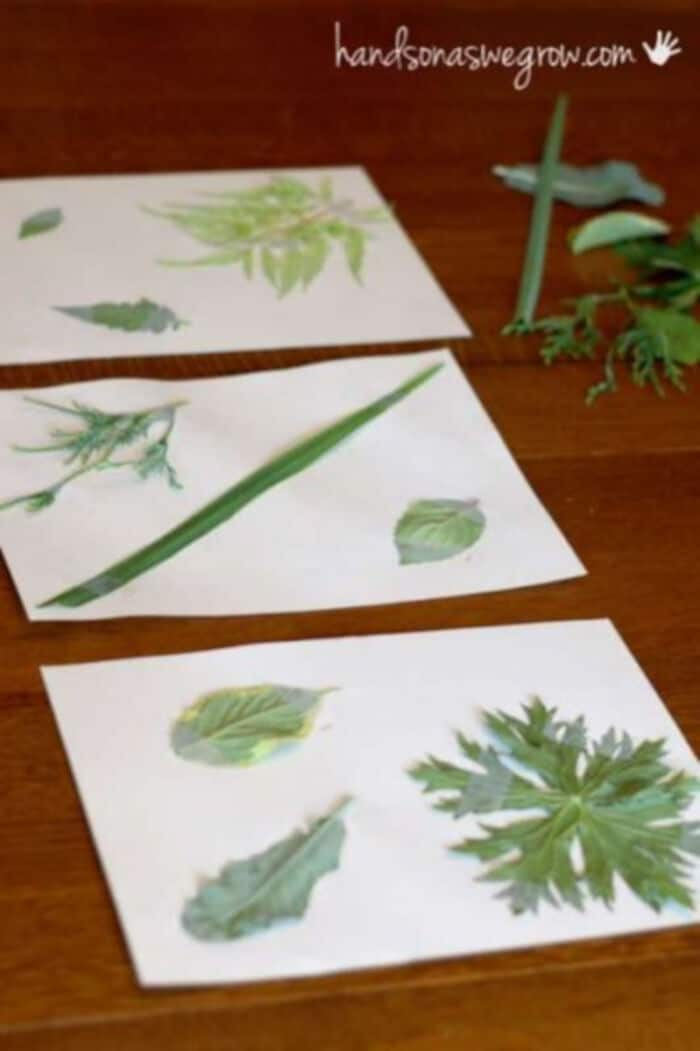 Leaf-Rubbings-Nature-Match-Up-by-Hands-On-As-We-Grow